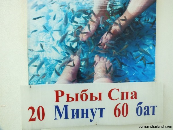 Fish spa стоит совсем не дорого 60 бат за 20 минут