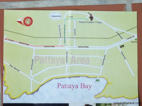 Карта проезда к деревне слонов в Паттайе