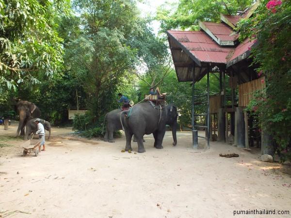 Погонщики на слонах