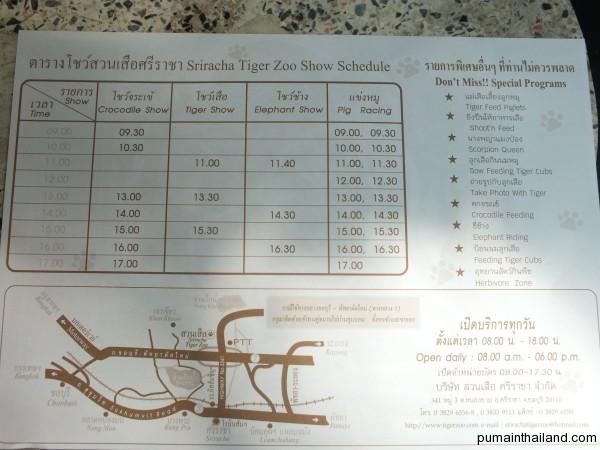 Расписание шоу в тигровом зоопарке