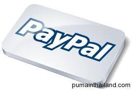 paypal почти все американские заказчики платят через него