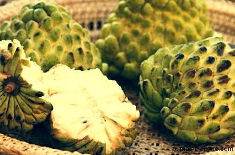 Очень приятный фрукт, многие его не любят, потому что ели не спелым