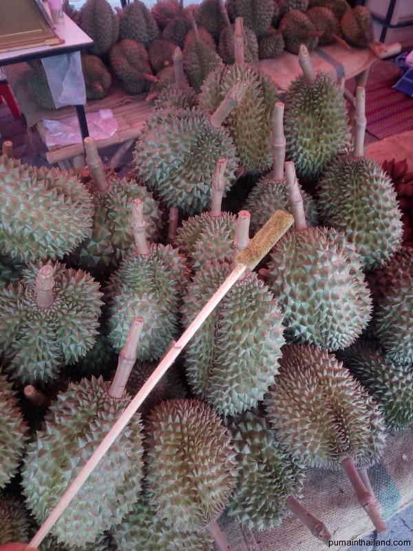 Немного потренировавшись можно самому по стуку палочки определять спелость дуриана