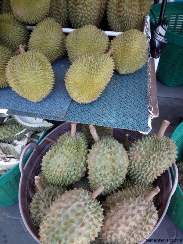 На фото сверху можно увидеть два сорта дуриана с мелкими шипами и крупными снизу